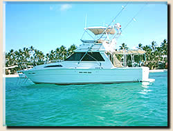 Punta Cana fishing charter - The Altamar