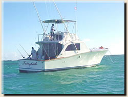 Punta Cana charter boat, The Intrepido